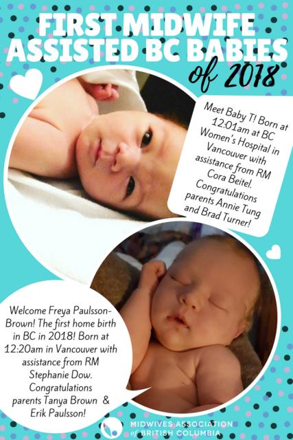 NY_Babies_2018_1.png